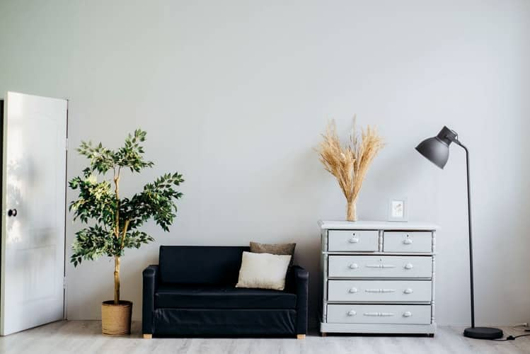 Ways To Bring Natural And Organic Elements Into Your Interiors